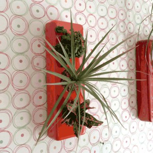 Cadre végétal céramique 3 plantes orange