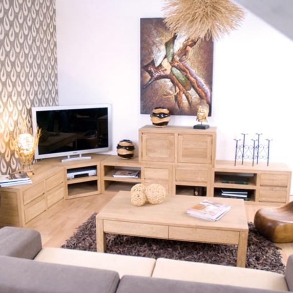 Meuble bas cologique de salon ferm par 2 portes en bois for Meuble tv qui se ferme a cle
